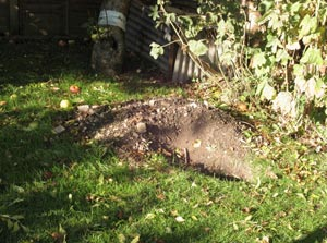 On occasions an injured badger may seek refuge in a garden and hide away in an outbuilding or under a shed, or if a badger starts to excavate a sett in your ...